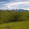 Naraty Grasslands Tien Shan XinJiang China (63502724)