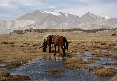 Lake Karakuri 0509 (01)