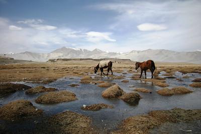 Lake Karakuri 0509 (00)