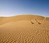 Taklimakan Desert near Kashgar