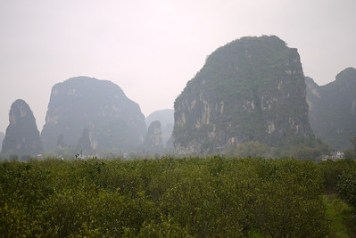Karst rocks and yellow flowers make up the landscape around Yangshuo, China.