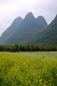 Karst mountains dot the landscape on a quiet bike ride through the outskirts of Yangshuo, China.