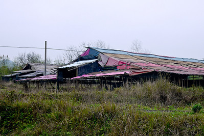 A colorfully covered storage building outside of Yangshuo, China.