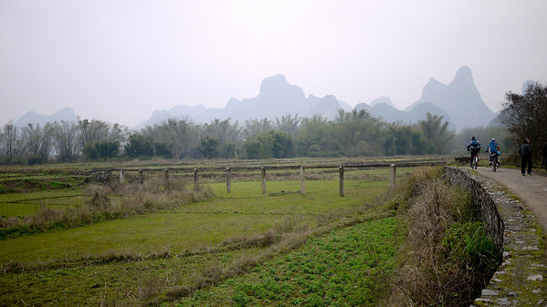 Rural rice paddies outside of Yangshuo, China.