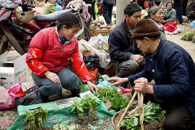 Locals shop at the weekly Fuli market for a supply of fresh veggies, fish, and other food staples, China.