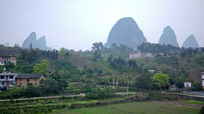 The green and lush grass in the outskirts of Yangshuo, China.