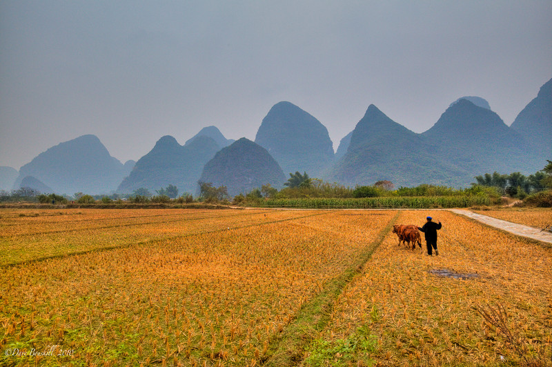 cycling tour yangshuo china