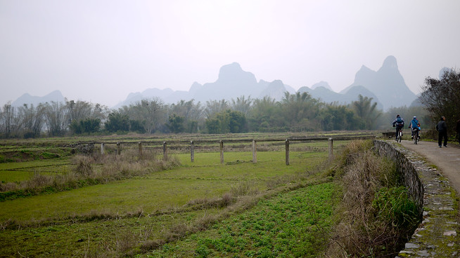 Rural rice paddy, Yangshuo China.