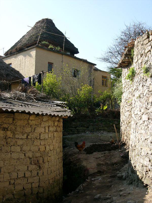 箐口哈尼村