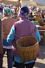 Empty basket roaming the market