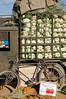 Truckload of greens