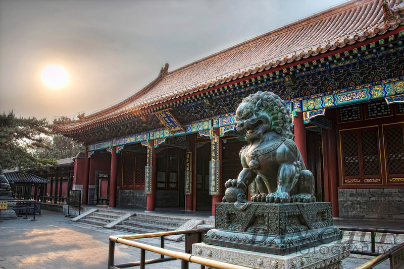 Lion at the Gate