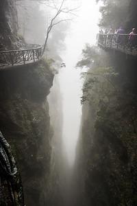 Misty Mountain Walk