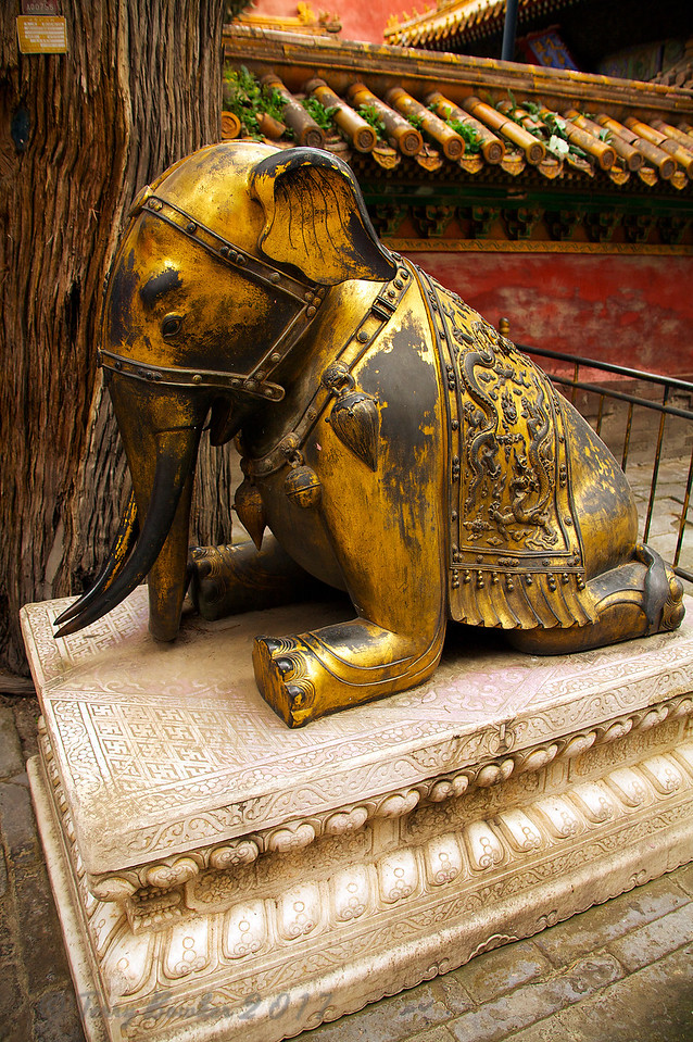 Elephant in the Forbidden City, Beijing