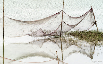 Ewan, Fishing Net