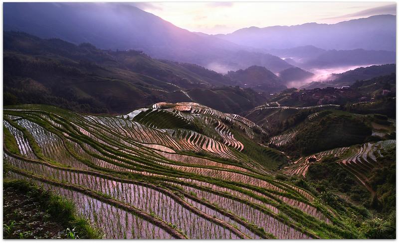 Tiantou Rice Terraces Sunrise