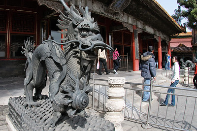Forbidden City Dragon