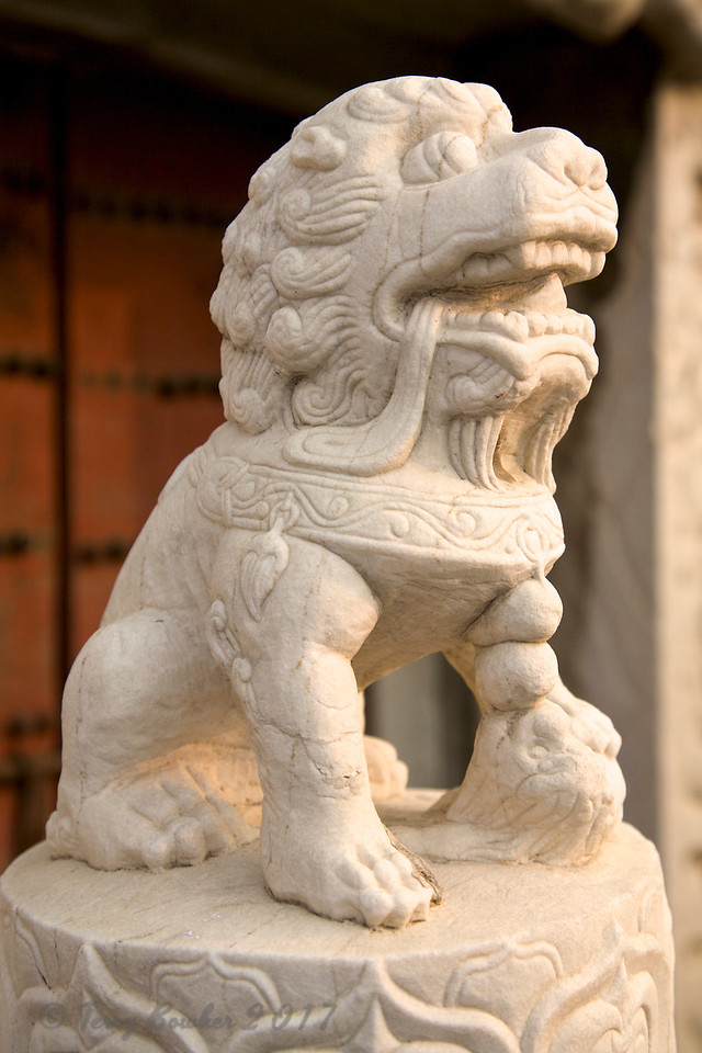 Frobidden City, Beijing. Foo Dog