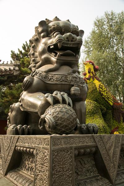 China 10-14©DonnaLovelyPhotos com-1833