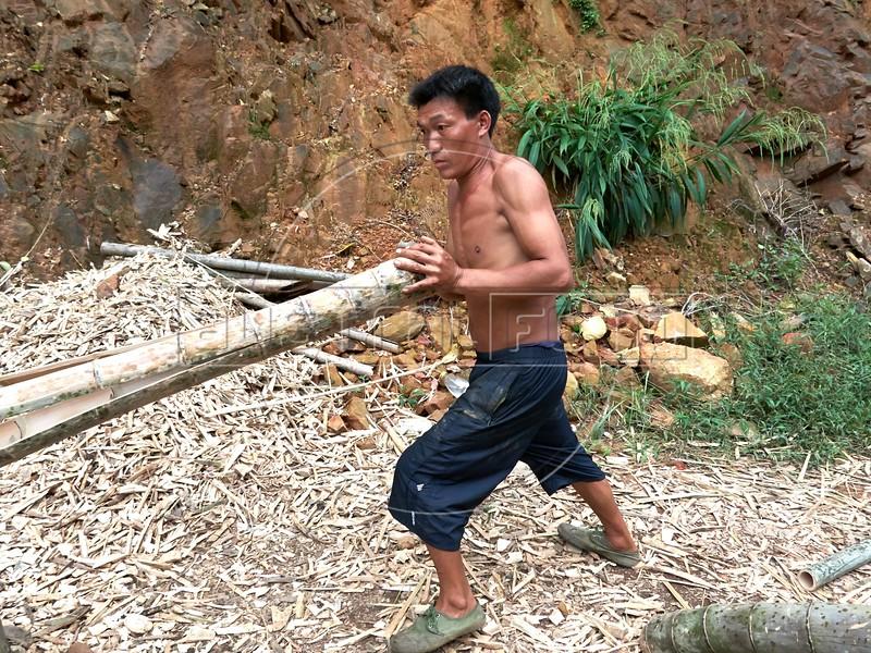 Bamboo Cutters