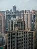 Shanghai High Rises