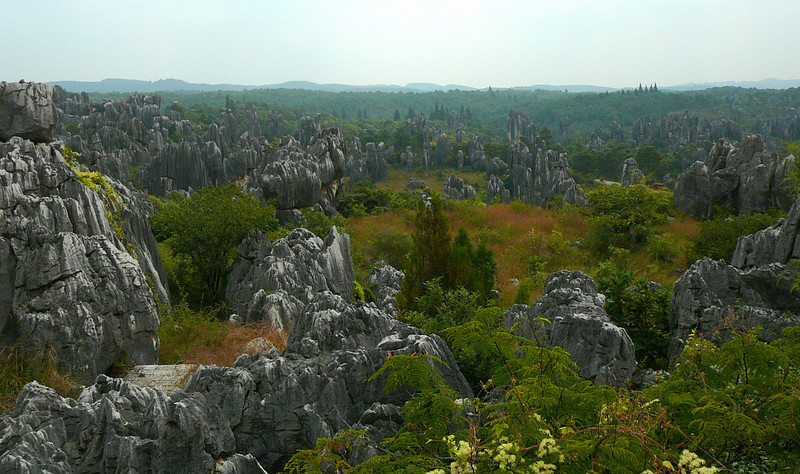 An overview of the Stone Forest.