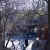 Beijing_2012 01_4492648