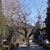 Beijing_2012 01_4492520