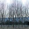 Beijing_2012 01_4492602