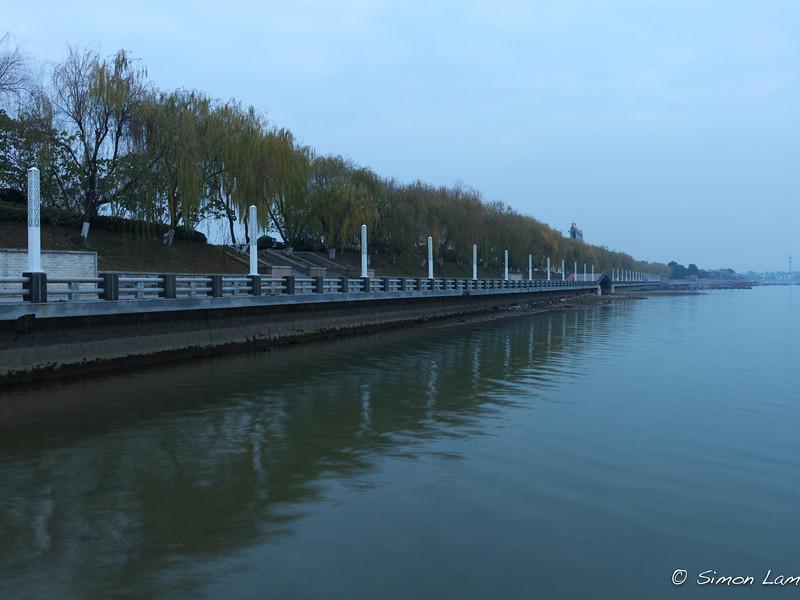 Feng Huang_2011 12_4491638