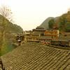 Feng Huang_2011 12_4491648