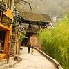 Feng Huang_2011 12_4491702