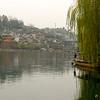Feng Huang_2011 12_4491736