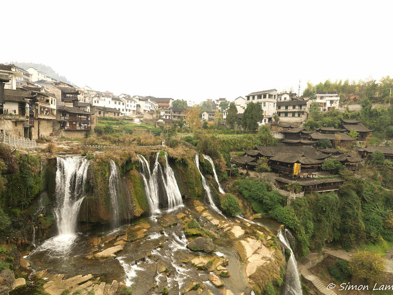 Fu Yung_2011 12_4491775