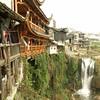 Fu Yung_2011 12_4491783