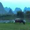 Yangshuo_2011 04_4490400