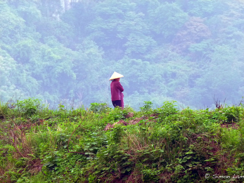 Guilin_2011 04-1010570