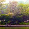 Guilin_2011 04-1010999