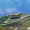 Guilin_2011 04-1010930