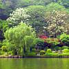 Guilin_2011 04-1010993