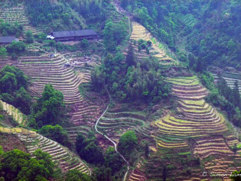 Guilin_2011 04-1010900