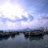 HK_TLW_0361