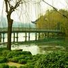 Xihu_2012 03_4492186