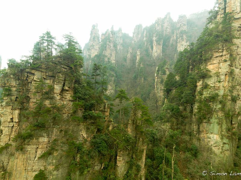 Tianji_2011 12_4492039