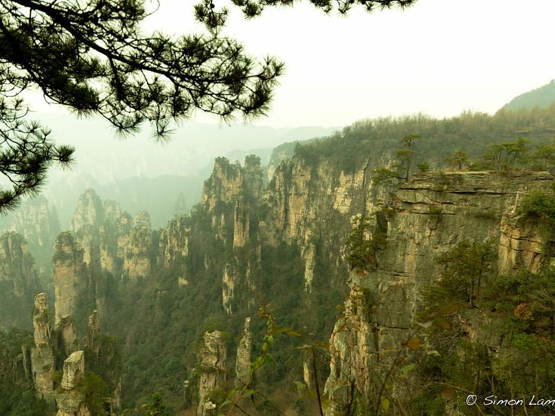 Tianji_2011 12_4492076