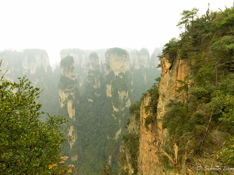 Tianji_2011 12_4492108