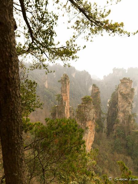 Tianji_2011 12_4492088