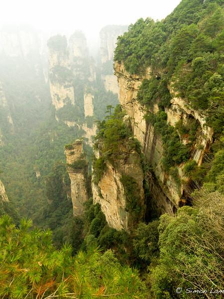 Tianji_2011 12_4492125