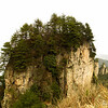 Tianji_2011 12_4492047