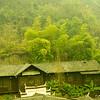 Zhangjiajie_2011 12_4492253